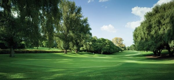 Parkview GC, Jo'burg - South Africa
