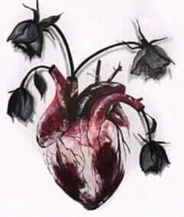 قلب ينبض بالامل Anatomical Heart Art Heart Art Anatomy Art