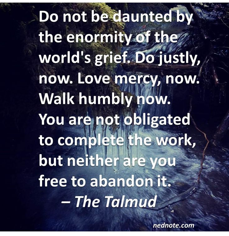 Do not be daunted by the enormity of the world's grief. Do justly, now. Love mercy, now. Walk humbly now. You are not obligated to complete the work, but neither are you free to abandon it. – The Talmud nednote.com