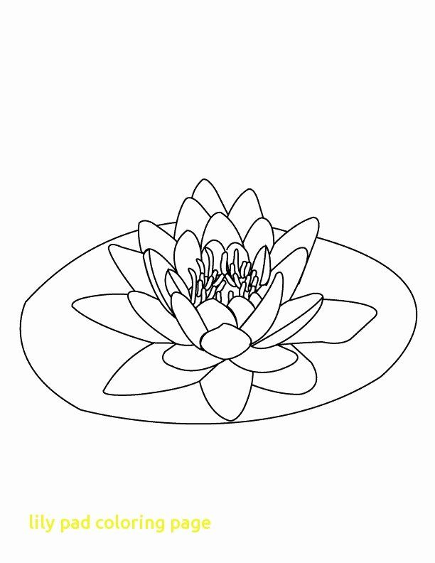 Lily Pads Coloring Page Elegant Lily Clipart Colouring Page Picture Lily Clipart In 2020 Flower Coloring Pages Flower Tattoo Drawings Lily Pads
