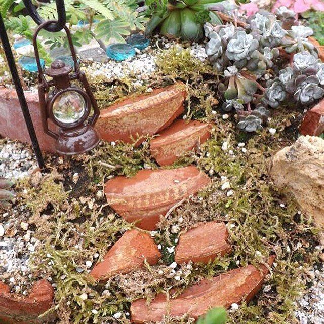 One of our fairy gardens from last year #fairygarden #gardening #greenhouse #flower #awesome
