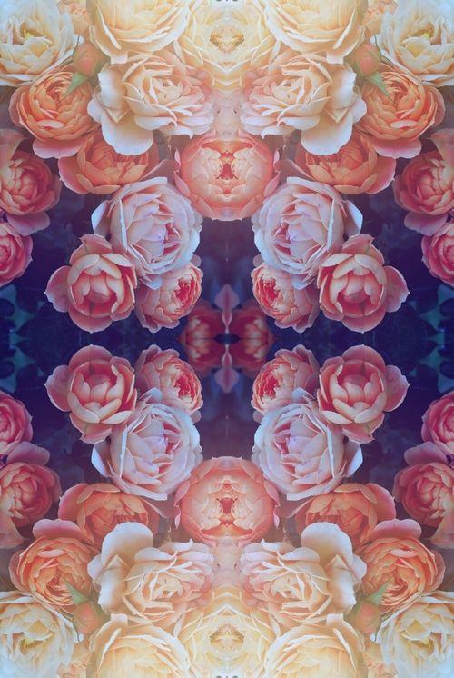 flowers mandala