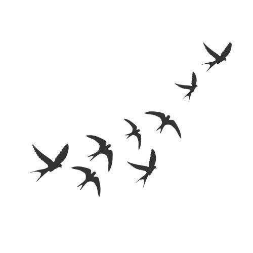 Pájaros | inkbox