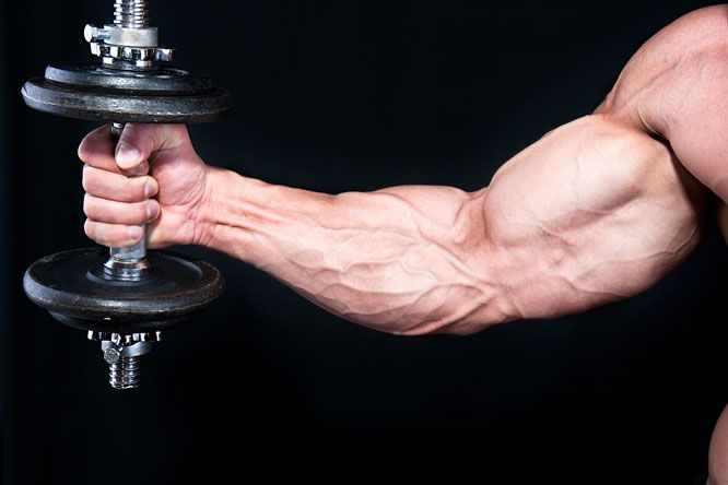 Start Big, Finish Small: Add size to your arms by changing your priorities