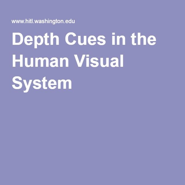 Depth Cues in the Human Visual System