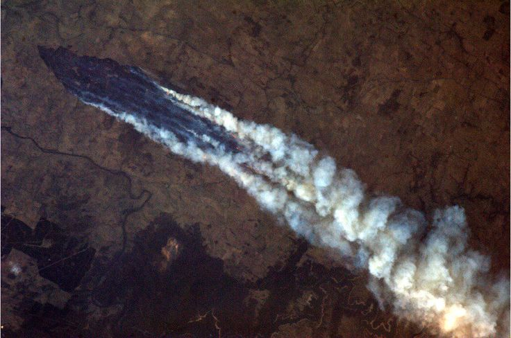 Twitter / Cmdr_Hadfield: Australian Bushfires - this near Burrinjuck Dam