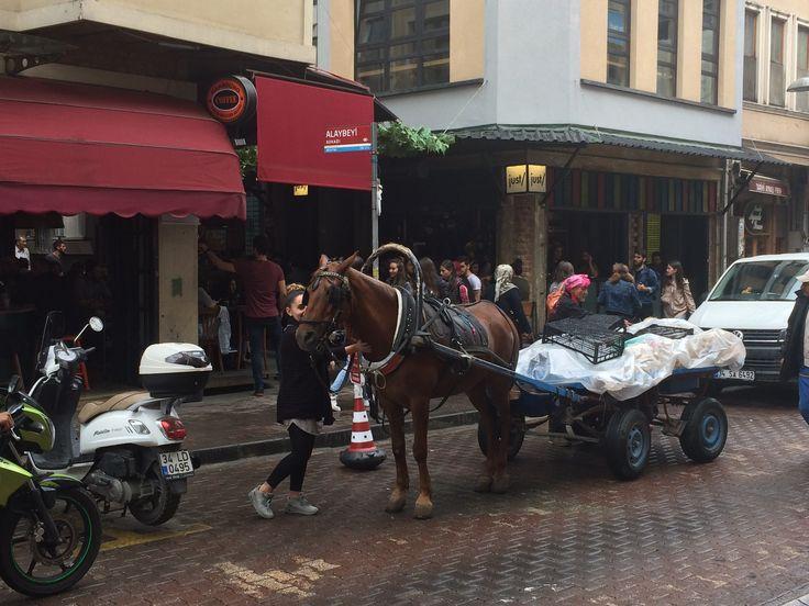 İstanbul Beşiktaş çarşısında at sevgisi