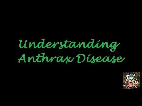 Understanding Anthrax Disease