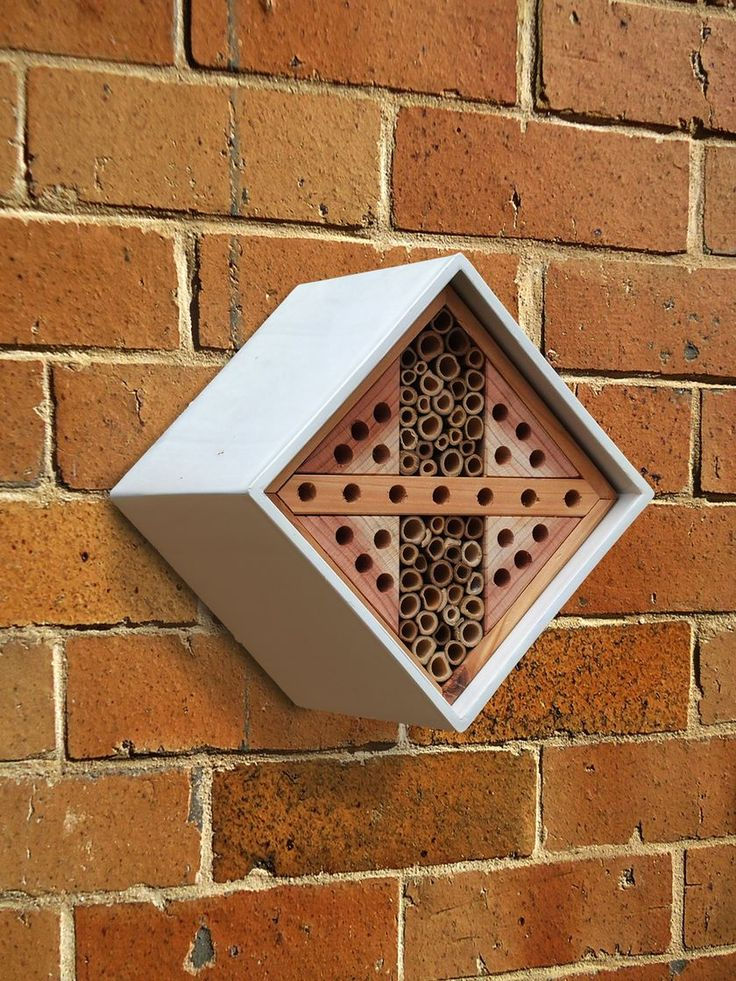 Urban Bee and Insect Nester. Modern style meets function in this insect and bee habitat. The interior canes are sized to meet the exacting needs of solitary bees, some of nature's most impressive pollinators. Solitary bees are non-swarming and rarely sting. Other beneficial insects may overwinter in the box, too.