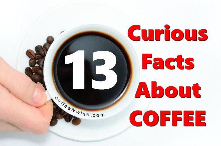 13 Curious Facts About Coffee Image