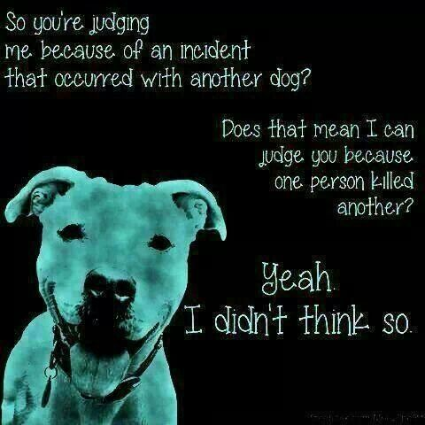 Breedism is no different than racism.