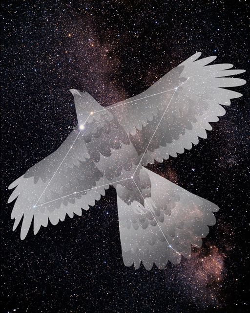 eagle constellation - Google Search
