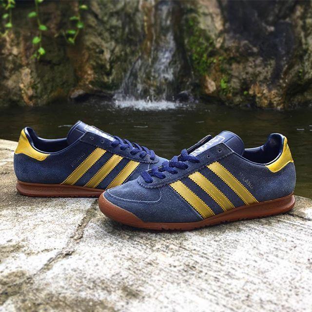 scarpe adidas trainer gialle