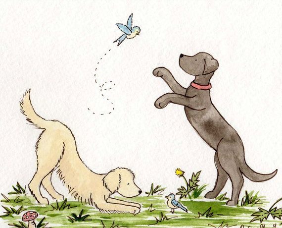 Best 25 Dog Nursery Ideas On Pinterest
