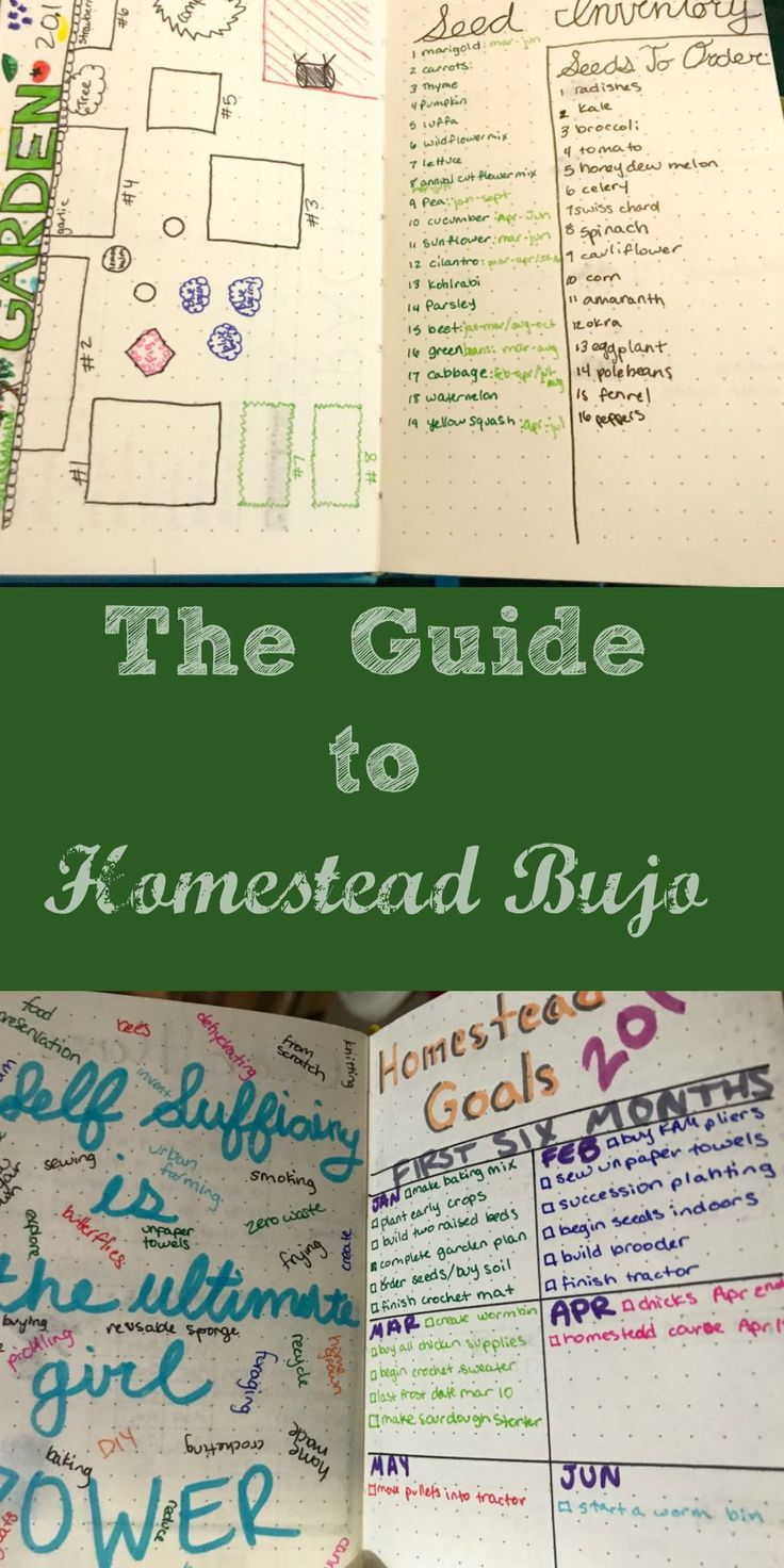 What is a Bullet Journal? Bujo?! What? Don't panic. Bujo