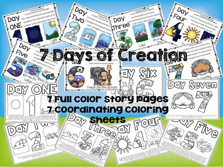 7 Days Of Creation Story Board And Coordinating Coloring Pages