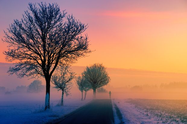 Loneliness Background Music Download Landscape Winter Landscape Nature