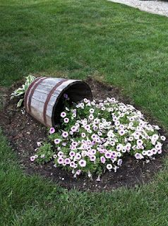 Wave Petunias Spilling Out of a Barrel - beautiful garden idea, i like purple or pink wave petunias but the white looks nice and frothy - great upcycle use for a wooden bucket no longer able to hold flowers - could use another container as well