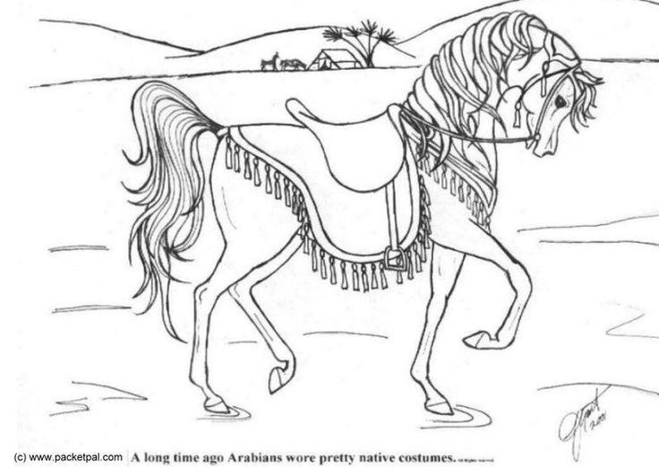 malvorlage dressur pferd  malvorlagen pferde