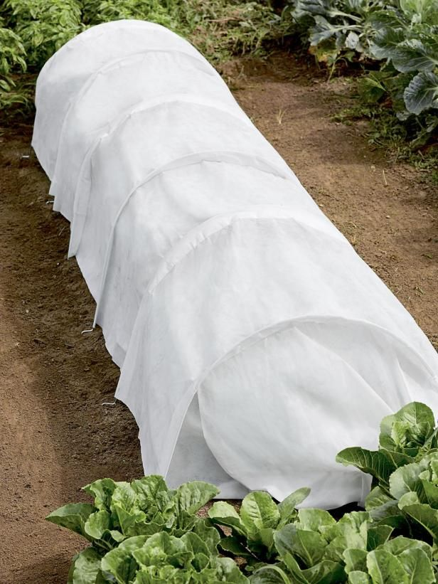 8 best images about row cover on pinterest gardens - Cover crops for vegetable gardens ...