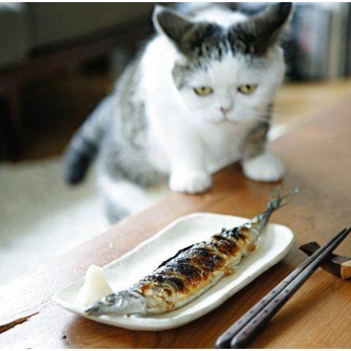 """""""3mz: via a-cats-yawn1986.up.seesaa.net """""""