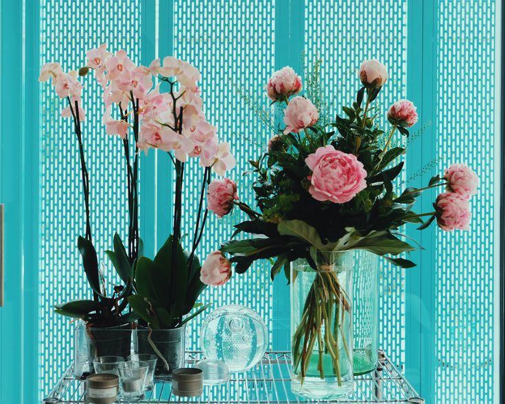 Rincones llenos de vida con peonías y orquídeas.