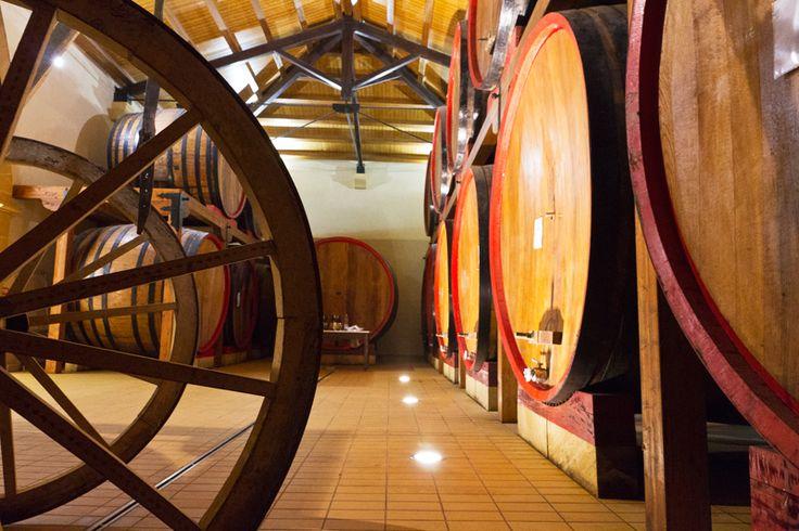 #cantine Lombardo #wine #barrels / #botti di #vino