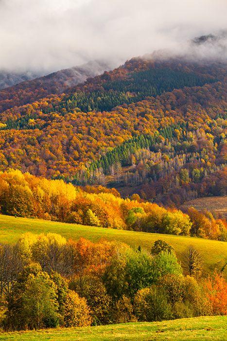 Bieszczady Mountains in autumn | Mikołaj Gospodarek