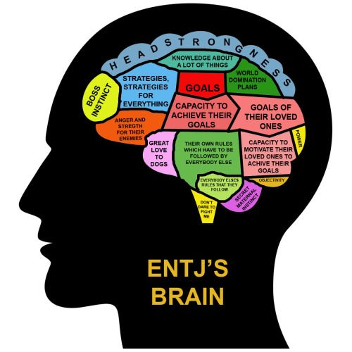 """MBTI in Real Life - Just add music and books (or maybe make that """"knowledge about a lot of thing"""" section bigger)"""