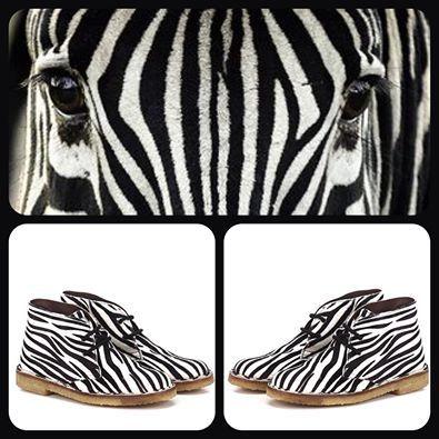Clark WEG in cavallino zebra.