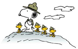 The Beagle Scouts led by Snoopy are a recurring theme in Peanuts. They consist of one beagle, Snoopy, and a number of his bird friends: Woodstock, Wilson, Conrad, Olivier, Harriet, Bill and Raymond.