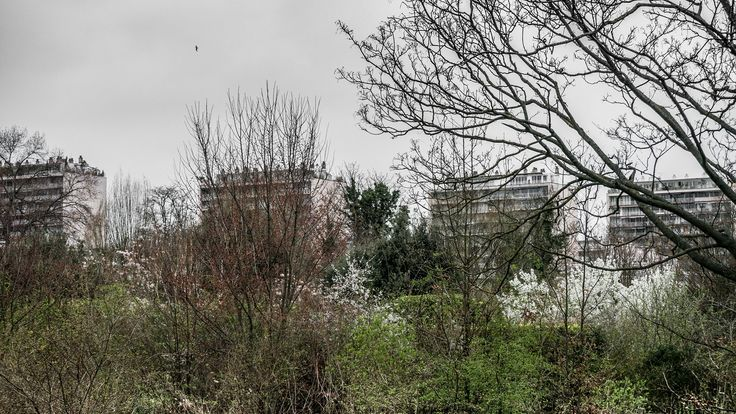 hidden building - Shot at the Isle of St Germain, Spring 2017.