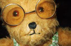 Teddy's selfie {he's incorrigible!}