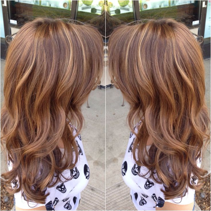 Warm brown with honey blonde highlights & long layered cut