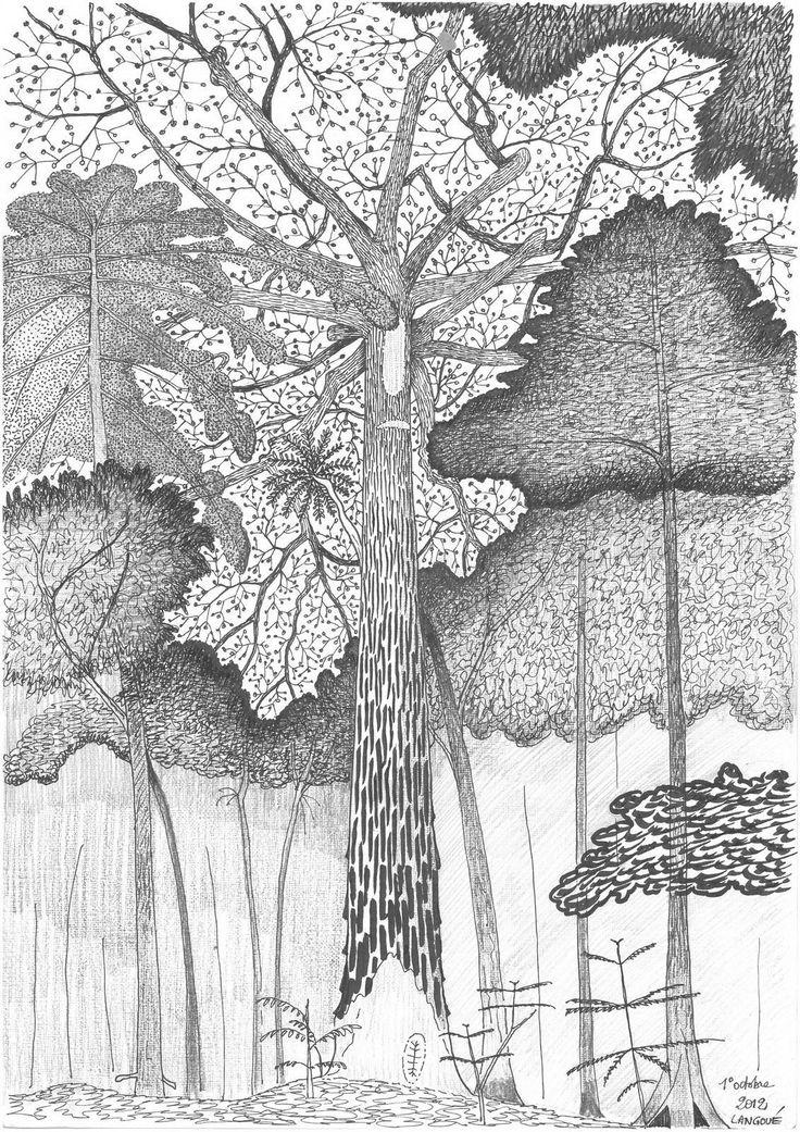 Francis Hallé CinéCoulisses.fr   [Critique] Il était une forêt
