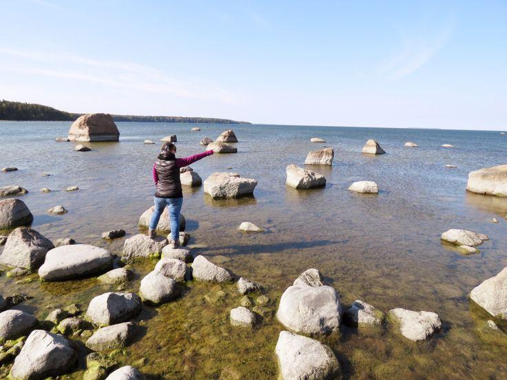 Wandern im Lahemma Nationalpark, Estland