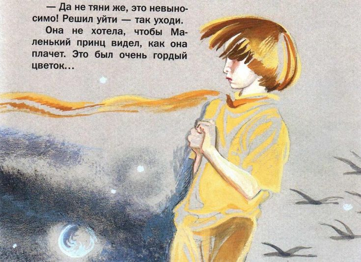 The Little Prince. Illustration by Nika Goltz