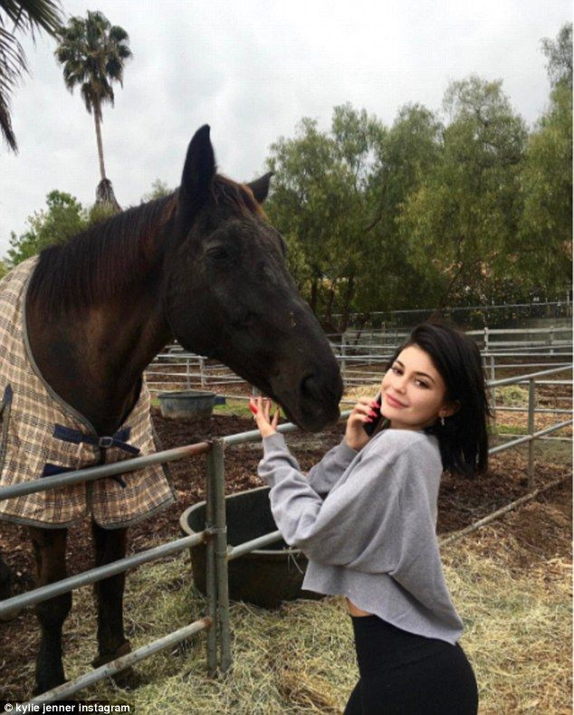 Animal kingdom:Kylie Jenner spent the afternoon in Los Angeles with friends... and horses, a goat and a trio of dogs... and shared it all with her many followers on Snapchat on Saturday