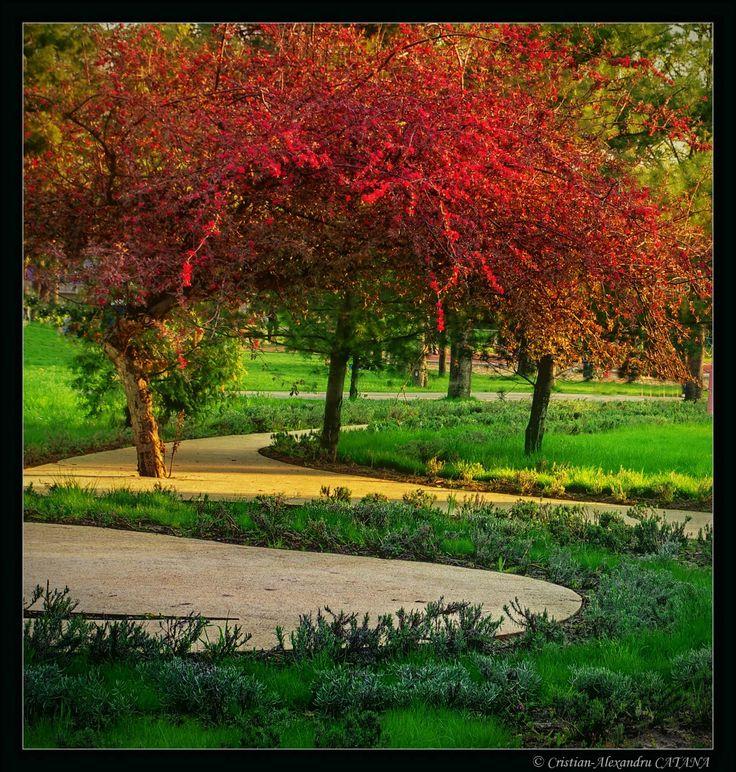 Children's park - Bucharest