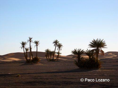 Merzouga, Morocco : World Travel Pictures