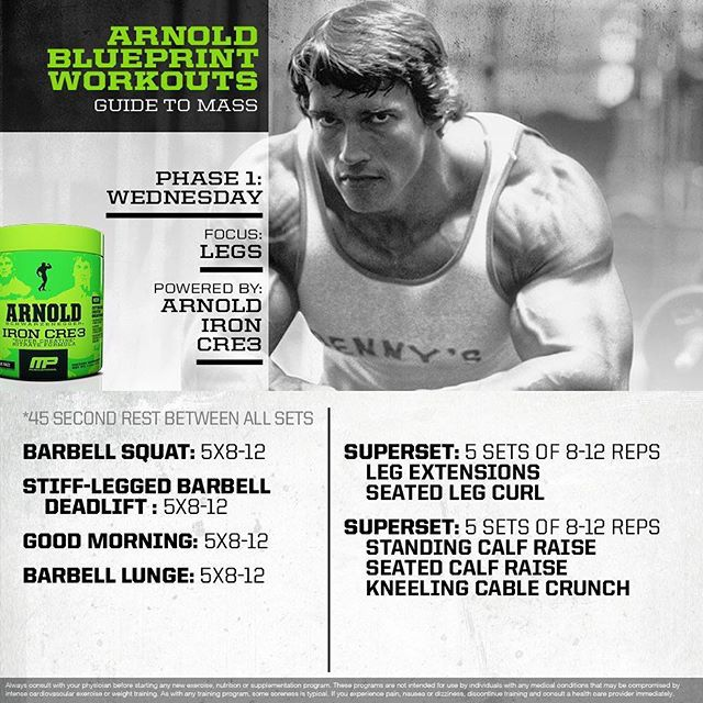 Best 25 arnold blueprint ideas on pinterest arnold workout httpsinstagramp9vgygkaqj malvernweather Choice Image