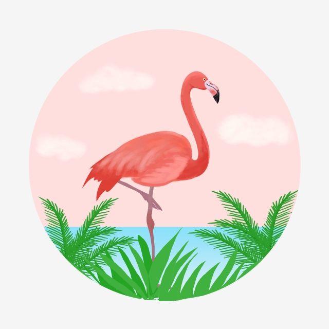 Comercial Fantasia Tropical Criatura Passaro Rosa Laranja Mao Desenhada Planta Flamingo Clipart De Flamingo Comercial Sonhe Imagem Png E Psd Para Download Gr