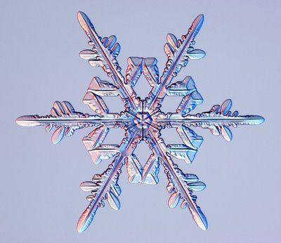 雪の結晶01                                                                                                                                                                                 もっと見る