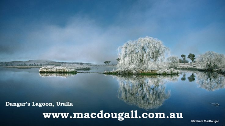 Dangar's Lagoon, near Uralla. I shot this image in July 2012, on my way to a client. It was -6° at 08:21 am. We sometimes get knocked for having a cold climate, but I reckon everything has beauty to it if you take the time to stop and look.