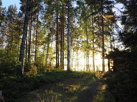 summer cottage in Teisko on Lake Näsijarvi, juhannus