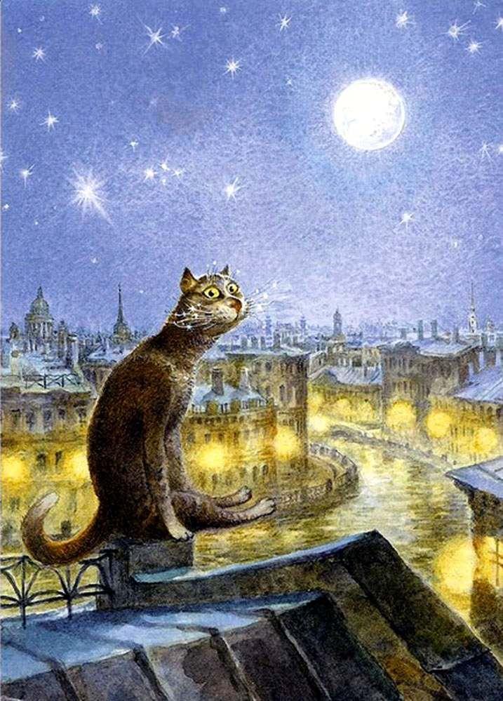 Коты на крыше ночью