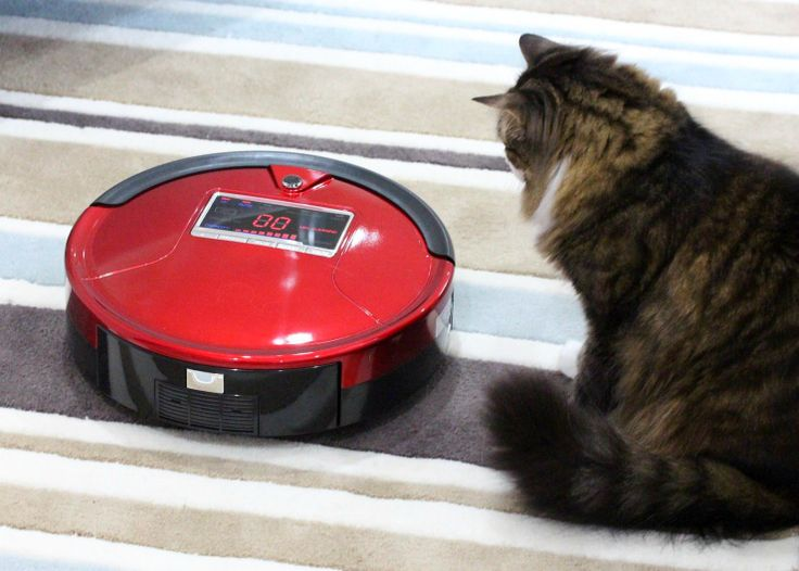 Is Pet Hair a Problem in Your House? Enter our Robot Vacuum Cleaner Giveaway!