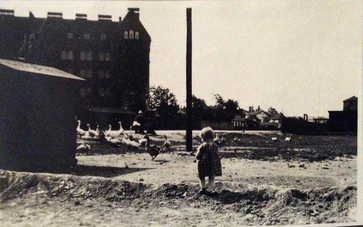Amagerbro Skole 1923. Foto fra Søren Magnussens samling