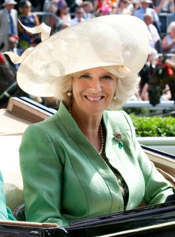 news of camilla bowles is gay