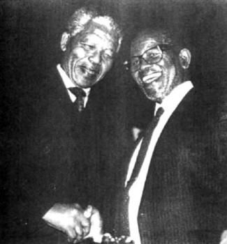 Image result for nelson mandela in codex magica